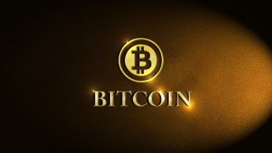 The Uses of Bitcoin